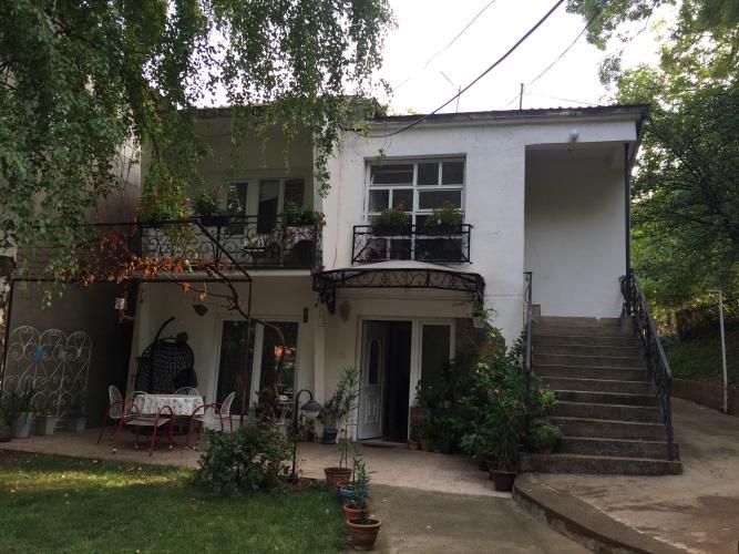 A morning in Niska Banja