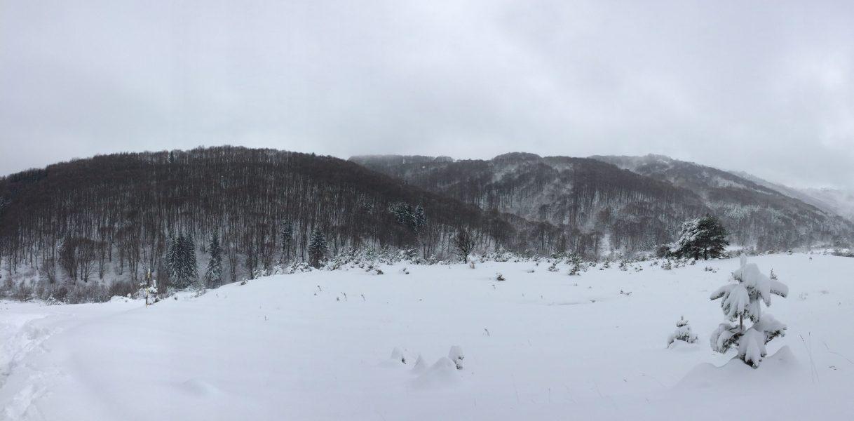 Vitosha in Winter